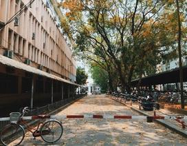 Ngắm ĐH Quốc gia Hà Nội đẹp nao lòng qua góc máy của chàng sinh viên 5 tốt