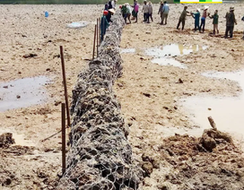 Thủy điện nhà Phó giám đốc Sở nắn dòng, cả trăm ha lúa… chết khát