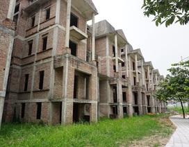 """Cận cảnh hàng loạt biệt thự bỏ hoang ở """"phố nhà giàu"""" ngoại ô Hà Nội"""