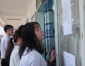 Đà Nẵng: Bài thi thay đổi từ 2,75 điểm lên 7 điểm sau phúc khảo