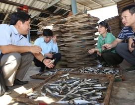 """Tồn đọng hơn 1.000 tấn cá khô, người dân """"ngồi trên đống lửa""""!"""