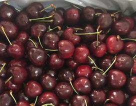 Cherry tại Mỹ có thực sự mất giá, mà ở Việt Nam chỉ hơn 200 nghìn đồng/kg?