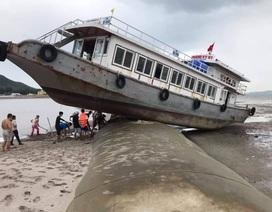 Trên đường tránh trú bão, tàu khách mắc kẹt trên đê bao dự án lấn biển