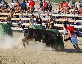 Nam thanh niên tử vong vì mất máu khi tham gia lễ hội bò tót