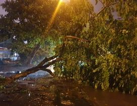 Bão số 3 suy yếu thành áp thấp nhiệt đới, Bắc Bộ mưa to đến rất to