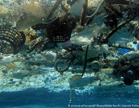 Rác thải nhựa trên biển – ai là thủ phạm?