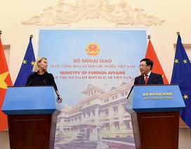 Việt Nam - EU nêu căng thẳng Biển Đông trong cuộc họp báo tại Hà Nội