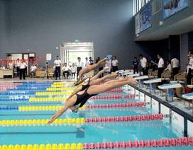 Gần 300 vận động viên đua tài tại giải bơi lặn vô địch các câu lạc bộ quốc gia