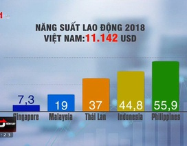 Tại sao năng suất lao động của Việt Nam còn thấp?