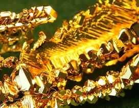 Phát hiện dạng vàng mới ở trung tâm Trái Đất