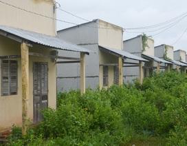 Hiện trạng thảm hại khu tái định cư của hộ nghèo tại Sóc Trăng