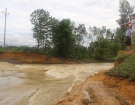 Gần 4.000 hộ dân lo lắng vì đê ngăn lũ hư hỏng không được nâng cấp