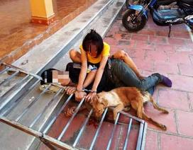 Đôi nam nữ trộm chó bị người dân bắt giao cho công an