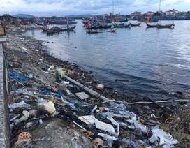 Ám ảnh với ô nhiễm tại cảng cá lớn nhất Bắc Trung Bộ