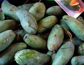 """Dự thảo hàng """"Made in Vietnam"""": Giống xoài Thái Lan nhưng trồng ở Việt Nam, gọi thế nào?"""