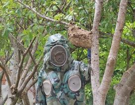 """Thuần phục ong """"tử thần"""", 8X miền núi kiếm gần trăm triệu đồng mỗi năm"""