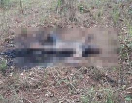 Người đàn ông chết cháy, nghi tự thiêu sau vườn nhà