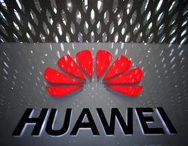 Lý do người Trung Quốc bất ngờ phẫn nộ với hãng viễn thông Huawei