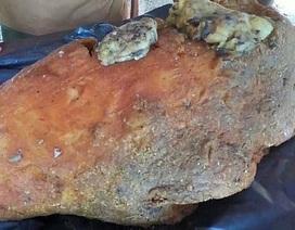 Nhặt được khối đá xù xì dạt bờ biển, ngư dân trúng lớn 12 tỷ đồng