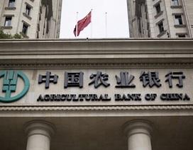 Ngân hàng Nhà nước thu hồi giấy phép văn phòng đại diện một ngân hàng Trung Quốc