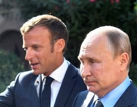 """Ông Putin """"phản pháo"""" quan ngại của Tổng thống Pháp về biểu tình tại Nga"""