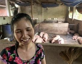 """Tiết lộ bất ngờ của chủ nuôi đàn lợn """"thoát"""" nhiễm dịch tả lợn châu Phi ở Đồng Nai"""