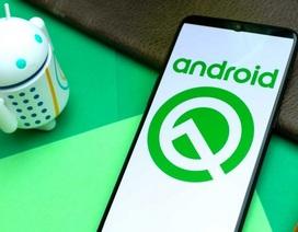 Bất ngờ với tên gọi chính thức của phiên bản Android Q