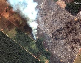 Ảnh: Giật mình trước mức độ cháy rừng ở Amazon - lá phổi của hành tinh
