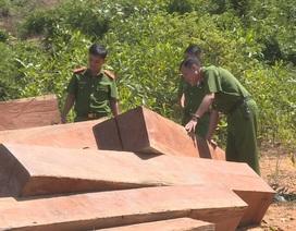 Đắk Lắk: Liên tiếp phát hiện 5 điểm tập kết gỗ lậu quy mô lớn