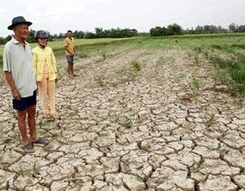 Tìm giải pháp trữ nước cho… Đồng bằng sông Cửu Long