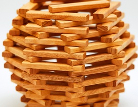 Hải quan TPHCM khởi tố doanh nghiệp xuất khẩu gỗ gian lận thuế