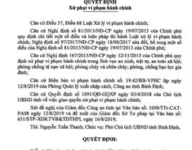 Phạt 95 triệu đồng với 4 người Trung Quốc cư trú bất hợp pháp tại Bình Định