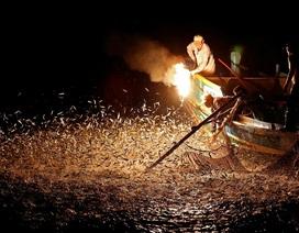 Độc đáo nghề đánh cá bằng... lửa