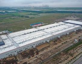 Bất chấp đề nghị của Tổng thống Trump, vẫn có nhiều công ty Mỹ chuyển tới Trung Quốc