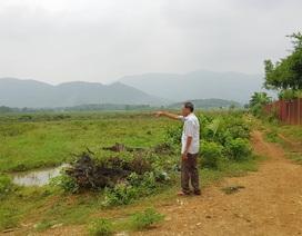 Chủ tịch Hà Nội nói về vụ người nhà Giám đốc Sở KH-ĐT được giao đất trái luật