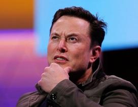 Elon Musk ví sốc về loài người khi đứng cạnh trí tuệ nhân tạo