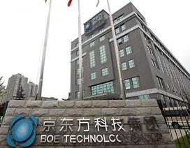 Làm thế nào một kế toán Trung Quốc biến một nhà máy Nhà nước đang hấp hối thành Tập đoàn sản xuất màn hình số 1 thế giới?