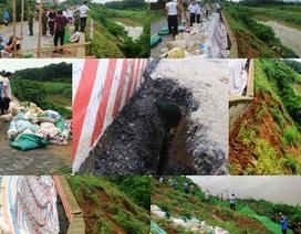 Xuất hiện vết sạt nguy hiểm trên đê hữu sông Chu