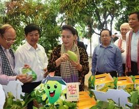 Chủ tịch Quốc hội Nguyễn Thị Kim Ngân đánh giá cao mô hình Hội quán ở Đồng Tháp