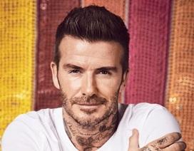David Beckham dạy các con thế nào về làm việc và kiếm sống?