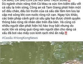 """Facebook đăng tin """"cá sấu nổi đầu trên sông"""" ở  Cà Mau là sai sự thật"""