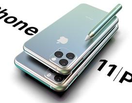 Lộ tên gọi và thông tin cấu hình chi tiết bộ 3 iPhone mới sắp ra mắt của Apple
