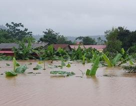 Bộ trưởng Giáo dục: Các địa phương được lùi ngày khai giảng nếu chưa an toàn do mưa lũ