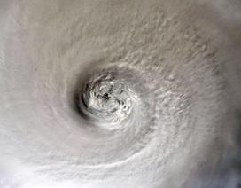 """Bahamas đổ nát như """"ngày tận thế"""" vì siêu bão """"quái vật"""" Dorian"""