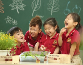 VAS và dự án môi trường biến trường học trở thành một Cộng đồng Xanh