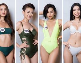 Thúy Vân cùng dàn thí sinh Hoa hậu Hoàn vũ Việt Nam gợi cảm với bikini