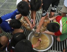 Học sinh phổ thông biến rác thải nhà bếp thành chất tẩy rửa sinh học