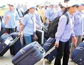 Đình chỉ 2 doanh nghiệp đưa thực tập sinh sang Nhật Bản