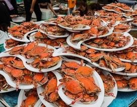 Bàn tiệc cưới hơn 1 nghìn con cua biển của người dân nông thôn Trung Quốc