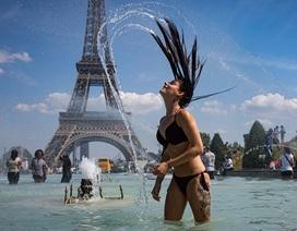 1.500 người Pháp thiệt mạng vì đợt nắng nóng vượt mọi kỷ lục